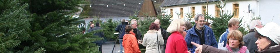Weihnachtsbaum Selber Schlagen Sauerland.Hof Selberschlagen Tannenhof Teipel